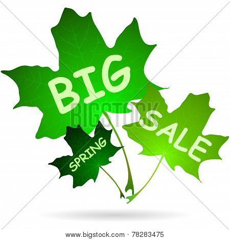 Illustration Of Words Big Spring Sale