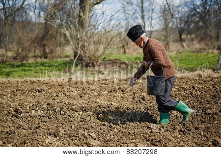 Senior Man Spreading Fertilizer