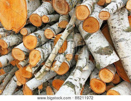 Pile Of White Logs.