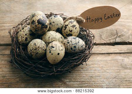 Bird eggs in nest on wooden background