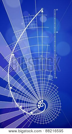 golden ratio blueprint - vector illustration / eps10