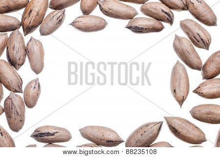 Pecan Nuts Frame