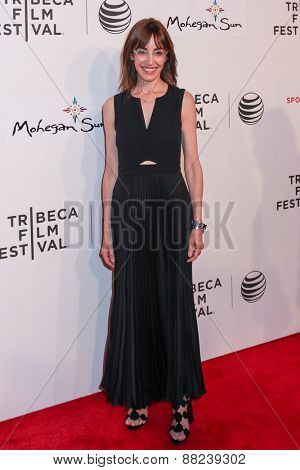 NEW YORK, NY - APRIL 16: Director Andrea Nevins attends the the premiere of 'Play It Forward' during the 2015 Tribeca Film Festival at BMCC Tribeca PAC on April 16, 2015 in New York City.