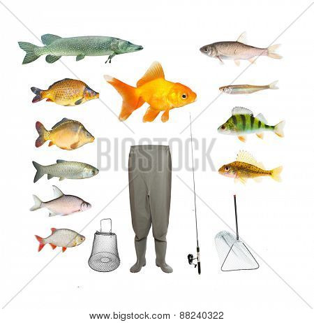 Great collection of isolated objects on fishing theme.