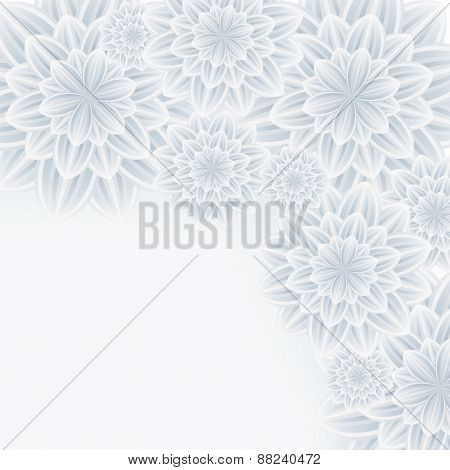 Romantic Background With Flower Chrysanthemum