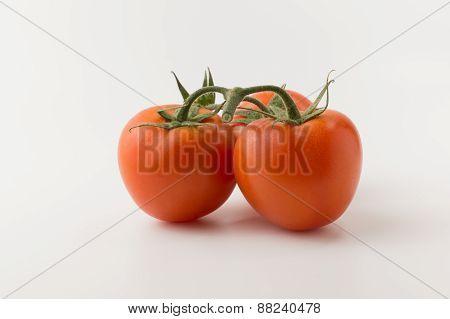 The Tomatos On White Background
