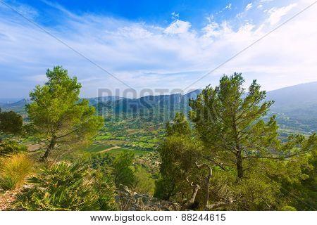 Majorca Puig de Maria Pollenca Pollensa in Mallorca balearic island of spain
