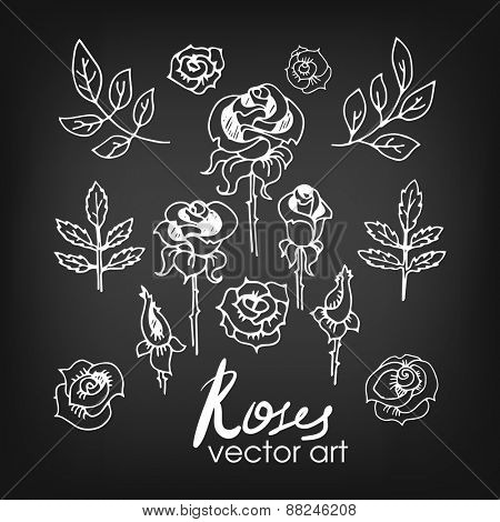 Set of Vintage Floral Hand-Sketched Elements. Flowers, Floral Elements, Roses and Leaves for Summer and Retro Design. Hand Drawn Style