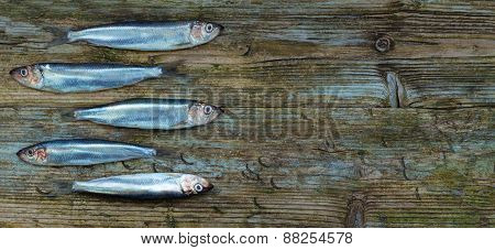 Baltic fish, herring sprats on wooden table