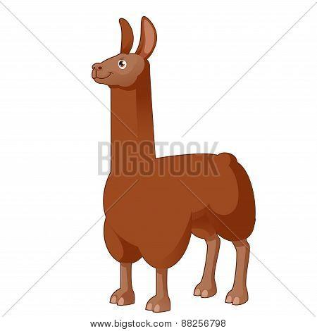 Cartoon Lama