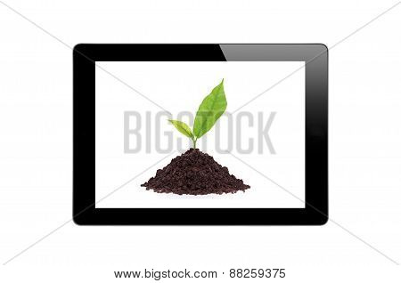 Black Touch Screen Tablet And Young Plant In Ground