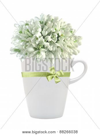 Beautiful Snowdrops In Cup Isolated On White Background