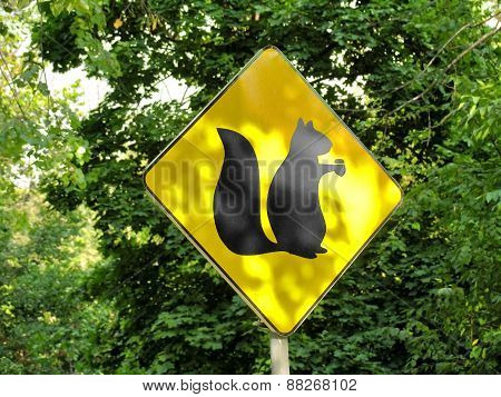 Yellow Sign Showing Habitats Of Squirrels