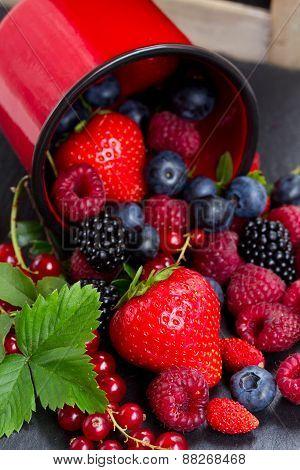 set of  fresh berries