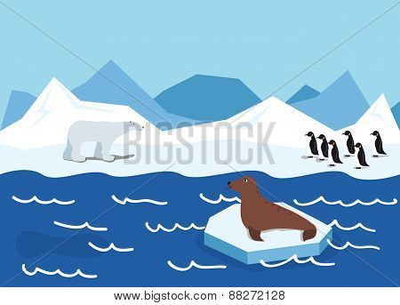 illustration of the Arctic