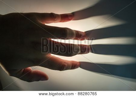 Hand Fingers And Shadows