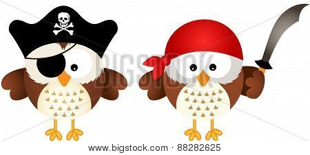 Pirates Owls