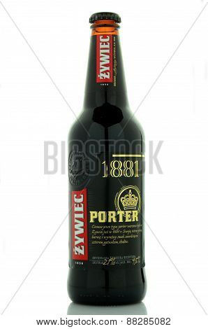 Zywiec porter beer isolated on white background