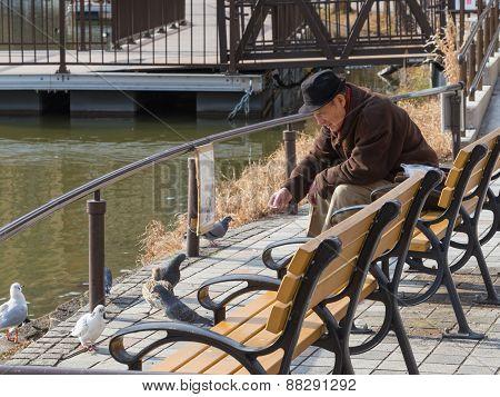 Elderly Man Feeding Birds