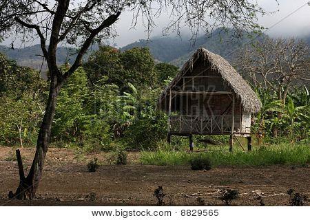 Indian Farm House