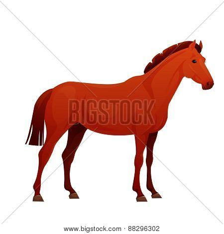 Realistic horse with red coat.