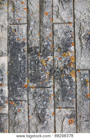 Abstract Stone Grunge Texture With Mold As Background