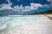 pic of coco  - Anse Coco tropical beach La Digue island Seychelles - JPG