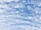 stock photo of cumulus-clouds  - many white fluffy cumulus clouds against a bright blue sky - JPG