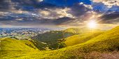 pic of conifers  - panoramic summer landscape with conifer forest on the grassy hillside meadow in high mountain in warm sunset light - JPG