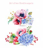 picture of hydrangea  - Illustration of red poppies and blue hydrangeas - JPG