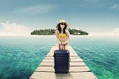 pic of jetties  - Beautiful woman wearing bikini while standing on a jetty and holding a suitcase at beach - JPG