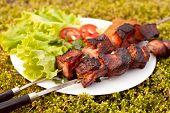 picture of kebab  - Shashlik with green salad - JPG