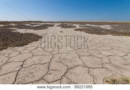 Land With Dry And Cracked Earth.