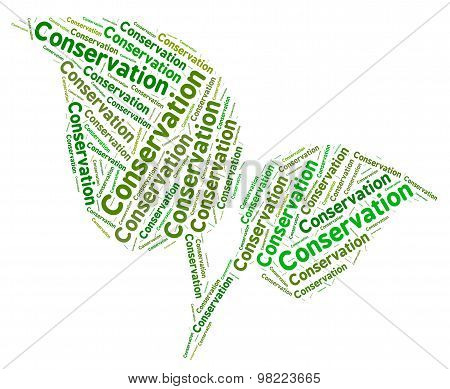 Conservation Word Represents Eco Friendly And Ecology