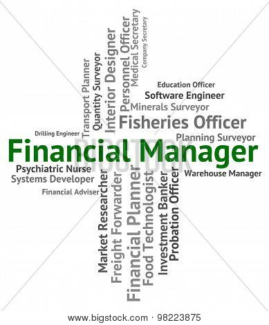 Financial Manager Represents Position Work And Earnings