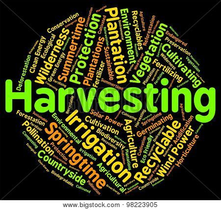 Harvesting Word Means Text Yield And Grain