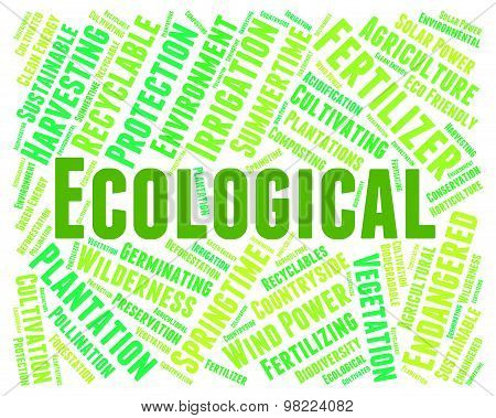 Eco Friendly Represents Ecological Word And Conservation