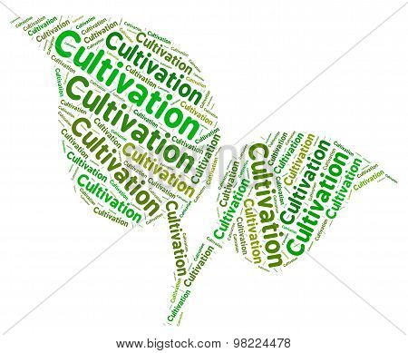 Cultivation Word Means Farms Farming And Cultivates