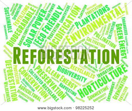 Reforestation Word Means Reforesting Forests And Woodland
