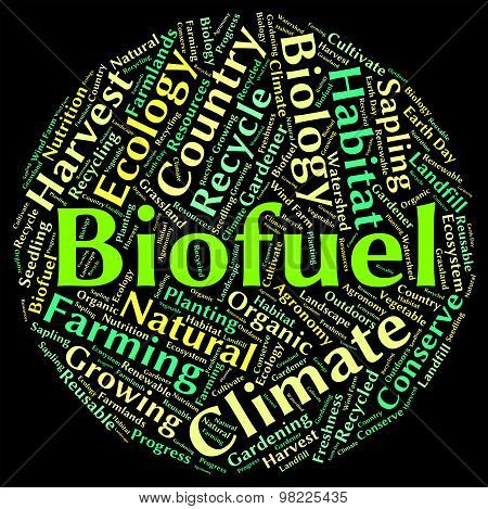 Biofuel Word Shows Renewable Energy And Biogas