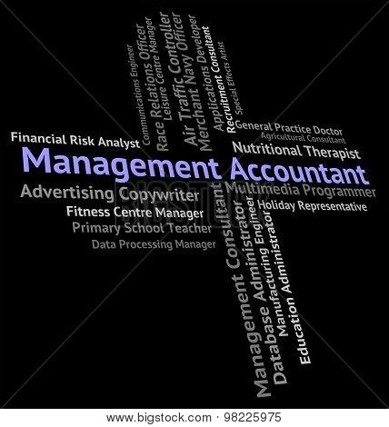 Management Accountant Indicates Balancing The Books And Accountants