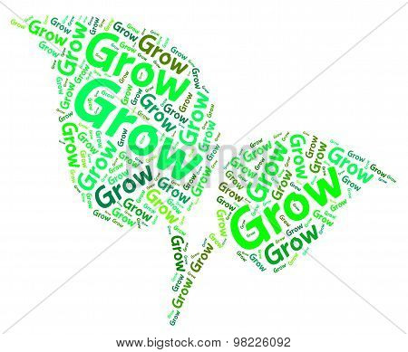 Grow Words Means Sows Cultivate And Text