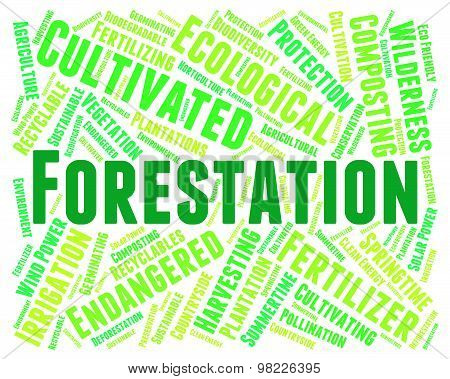 Forestation Word Means Park Woodland And Trees