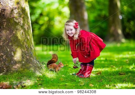 Little Girl Feeding A Squirrel In Autumn Park