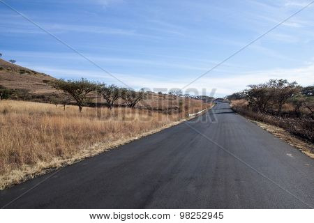 Newly Tarred Road Lined With Dry Grass And Thorn Trees