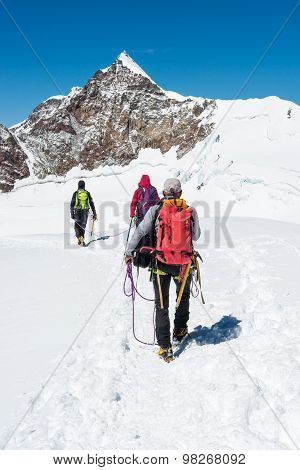 Group of climbers walking on a glacier.