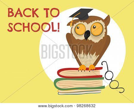 Cute owl sitting on books