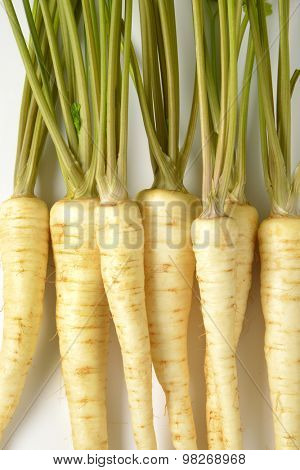 close up of white parsley roots on white background