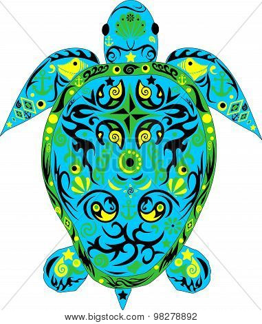 Turtle the turquoise