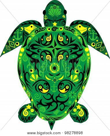 Turtle the darkly green